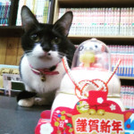 http://catcafe-shana.hp-tsukurumon.jp/wp-content/uploads/sites/3144/2020/01/header20200101232740_780932750.jpg